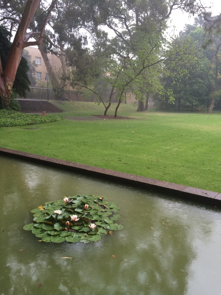 Light hail falling on the Reid Library moat
